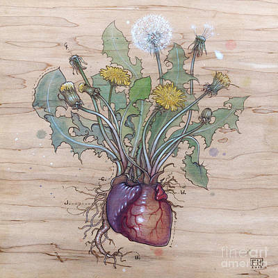 Pyrography Mixed Media - Dandelion Heart by Fay Helfer