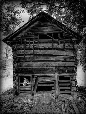 Daniel Boone Cabin Print by Karen Wiles