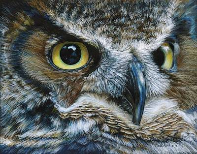 Yellow Beak Drawing - Dark Owl by Carla Kurt