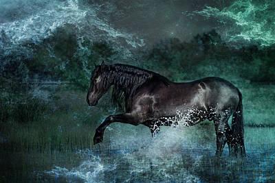 Photograph - Dark Water by Pamela Hagedoorn