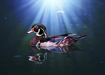 Sun Rays Digital Art - Darkwing Ducky by Bill Tiepelman