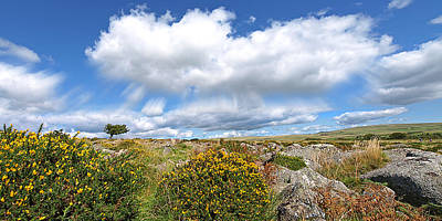 Dartmoor Panoramic Print by Gill Billington