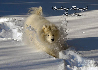 Winter Fun Photograph - Dashing Through The Snow by Lois Bryan