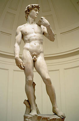 Muscular Sculpture - David by Michelangelo Buonarroti