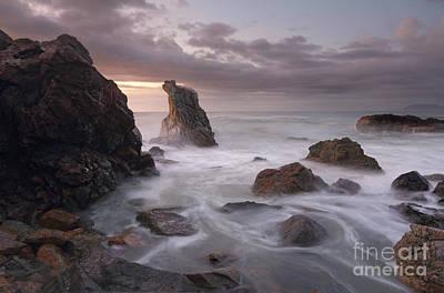 Dawn Colours At Lighthouse Beach Port Macquarie Print by Leah-Anne Thompson