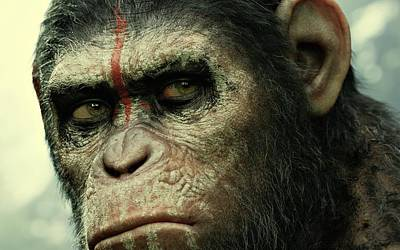 Dawn Of The Planet Of The Apes  Print by Movie Poster Prints