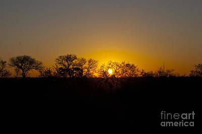 Landscape Digital Art - Dawn by Pravine Chester