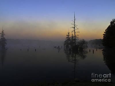 Cypress Stump Photograph - Dawns Early Light by Ken Frischkorn