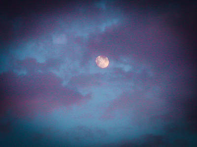Of Bittersweet Photograph - Daylight Moon by Robert J Andler
