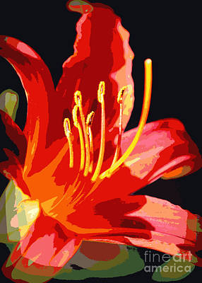 Lilies Photograph - Daylily Flame by Carol Groenen
