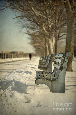 Snowstorm Photograph - Days Of Cold Chills by Evelina Kremsdorf