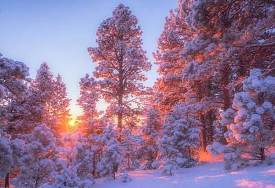 December Sunrise Print by Darren  White