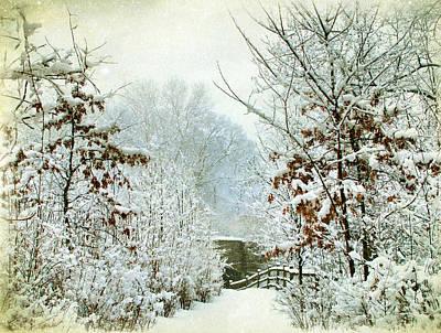 Winter-landscape Digital Art - December's Path by Jessica Jenney