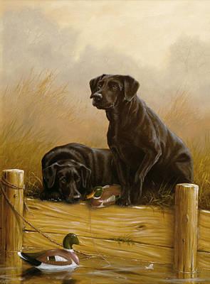 Black Lab Watercolor Painting - Decoy Dawn by John Silver