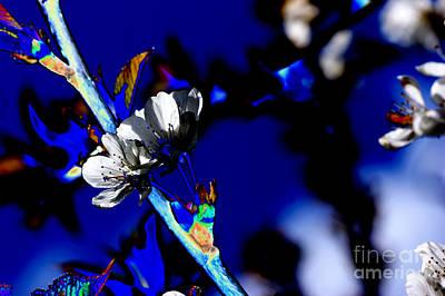 Abstract Forms Digital Art - Deep Blue by Carol Lynch