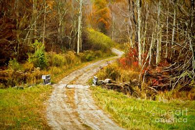 Squirrel Mixed Media - Deep In The Woods by Deborah Benoit