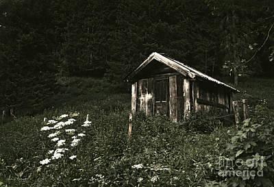 Black_white Photograph - Deep In The Woods by Gerlinde Keating - Galleria GK Keating Associates Inc