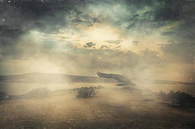 Realism Photograph - Deep Sleep by Taylan Soyturk