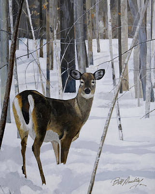 Deer In The Snow Print by Bill Dunkley