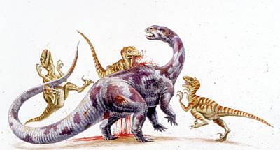 Deinonychus Attacking Tenontosaurus Print by Deagostini/uig