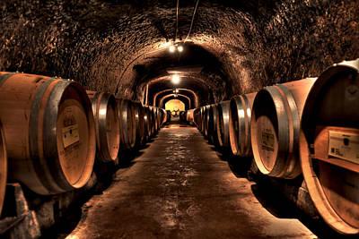 Wine Cellar Photograph - Del Dotto by Sean Willis