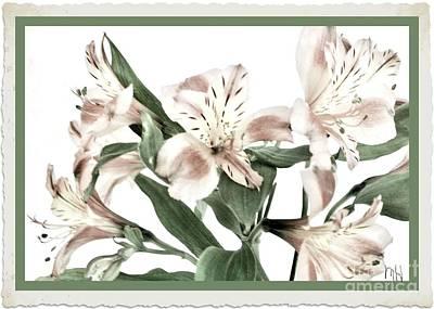 Wrap Digital Art - Delicate Flowers by Marsha Heiken