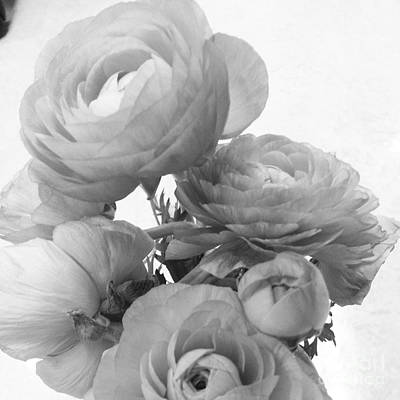 Early Spring Mixed Media - Delicate Ranunculus by Heather L Wright