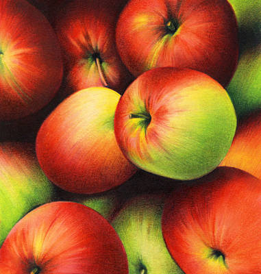 Reds Of Autumn Drawing - Delicious Apples by Natasha Denger