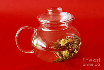 Delightful Blooming Tea Print by Inspired Nature Photography Fine Art Photography