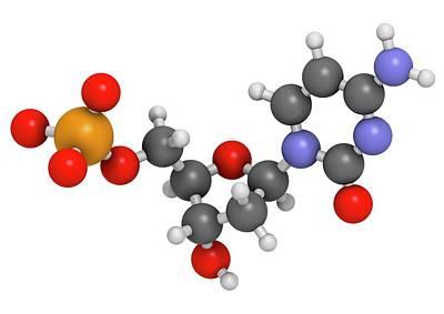 Deoxycytidine Monophosphate Molecule Print by Molekuul