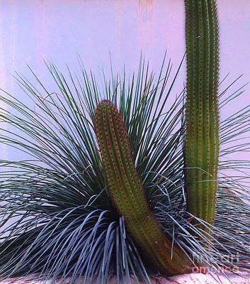 Desert Classic Print by Ann Johndro-Collins