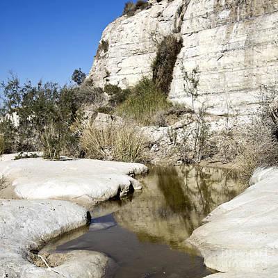 Israel Photograph - Desert Landscape 05 by Arik Baltinester