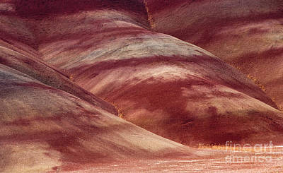 Desert Red Print by Mike  Dawson