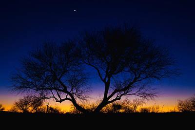 Desert Silhouette Print by Chad Dutson