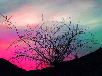 Desert Sunset Print by Terril Heilman