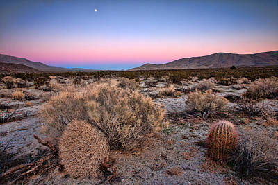 Desert Twilight Print by Peter Tellone
