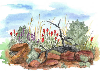 Watercolor With Pen Drawing - Desert Wildflowers by Cathie Richardson