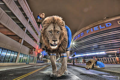 Detroit Lions At Ford Field Print by Nicholas  Grunas