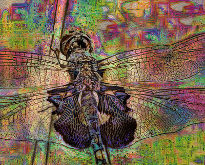 Metal Dragonfly Painting - Dfly by Jack Zulli