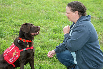 Sniff Photograph - Diabetes Alert Assistance Dog And Owner by Louise Murray