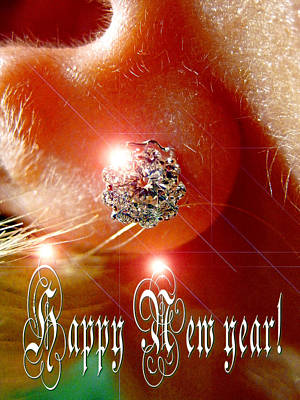 Diamonds Are A Girl's Best Friend. Original by Andy Za