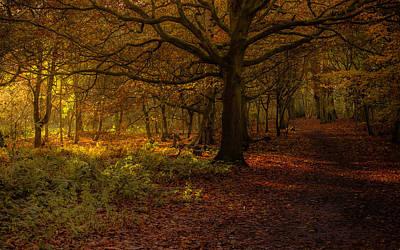 Did Someone Say Autumn? Print by Chris Fletcher