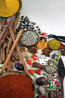 Different Types Of Spices Print by Nico Tondini