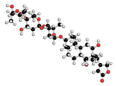 Chemical Photograph - Digoxin Heart Failure Drug Molecule by Molekuul