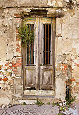 Dilapidated Brown Wood Door Of Portugal Print by David Letts