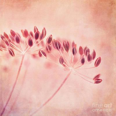 I'll Wait All Winter Print by Priska Wettstein