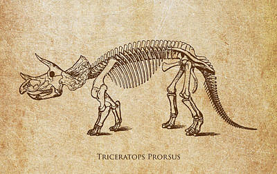 Extinct And Mythical Digital Art - Dinosaur Triceratops Prorsus by Aged Pixel