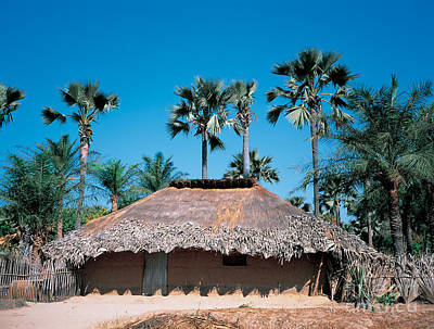 Senegal Photograph - Diolla Hut, Senegal by Adam Sylvester