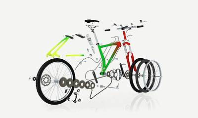 Disassembled Parts Of A Mountain Bike Print by Dorling Kindersley/uig