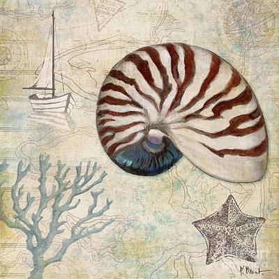 Sand Dollar Painting - Discovery Shell I by Paul Brent